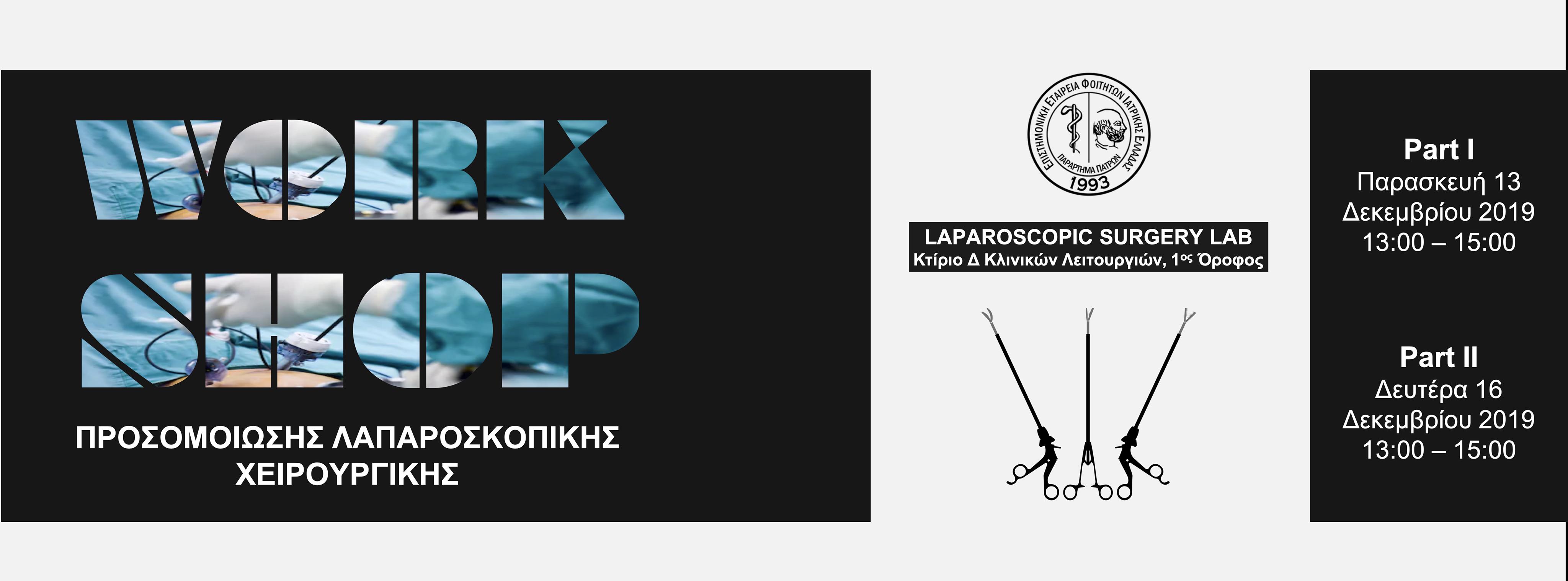 WORKSHOP   SIMULATION OF LAPAROSCOPIC SURGERY
